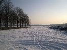 Theresienwiese winter_8